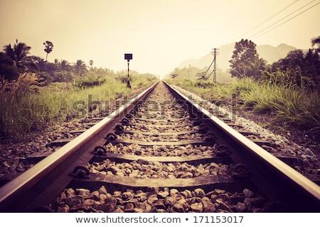railroad track perspective Stock photo © ArenaCreative