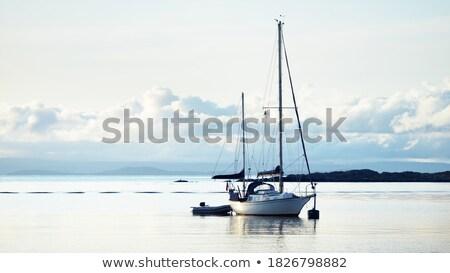 Kettő vitorlás hajó tenger zászló hajó retro Stock fotó © 5xinc