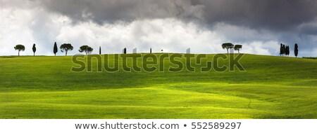 Romântico toscana nuvens paisagem pôr do sol céu Foto stock © w20er