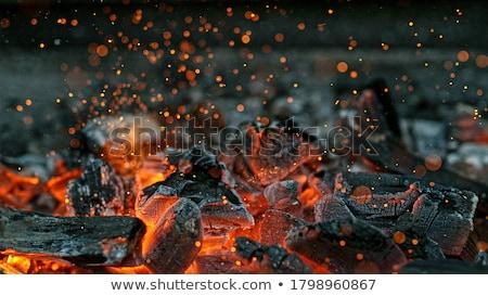 Live coals Stock photo © ptichka
