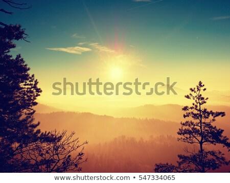 солнце Лучи небе луч Сток-фото © Steffus