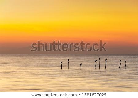 Cloudy and minimalist seascape Stock photo © dutourdumonde