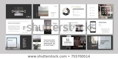 профессиональных бизнеса охватывать шаблон дизайна журнала Сток-фото © SArts