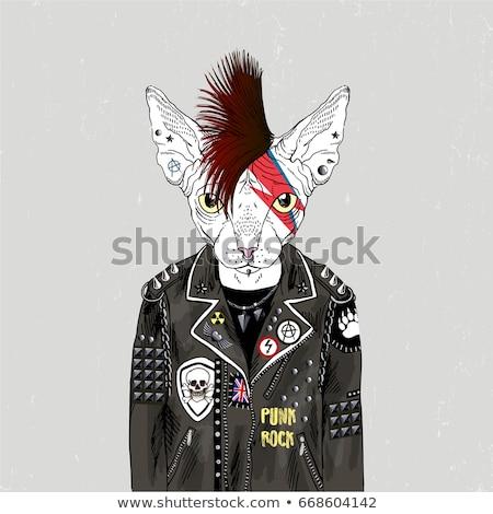 Retrato punk chaqueta de cuero negro sexy moda Foto stock © feedough
