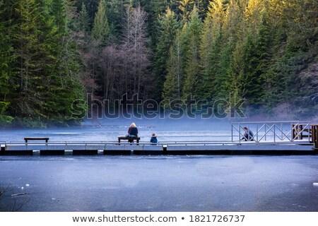 Erkek dondurulmuş göl sis çocuk kış Stok fotoğraf © IS2