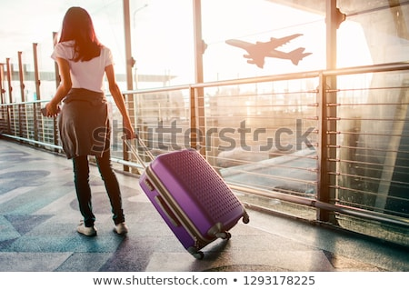 people at the airport with luggage stock photo © elnur
