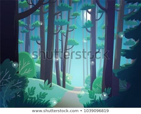 ciemne · lasu · cartoon · ilustracja · wektora - zdjęcia stock © bluering