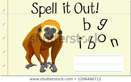 Spell it out gibbon Stock photo © bluering