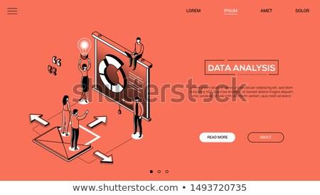 статистика · иллюстрация · линия · дизайна · стороны · увеличительное · стекло - Сток-фото © decorwithme