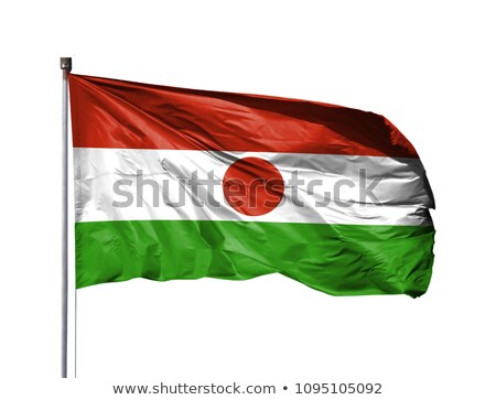 Niger flag isolated on white Stock photo © daboost