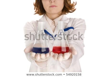 Tudós kettő háttér tanár állás fehér Stock fotó © colematt