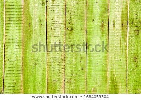 fából · készült · létra · padlás · izolált · fehér · ház - stock fotó © colematt