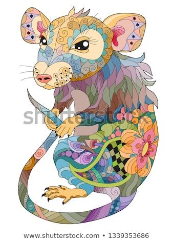 cinese · zodiaco · 12 · animale · astrologico · segno - foto d'archivio © natalia_1947