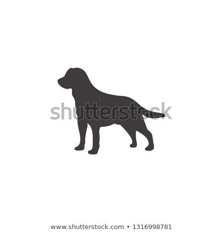 Labrador ikona sylwetka stylu psa stoją Zdjęcia stock © JeksonGraphics