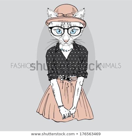 Vecteur élégante femme chats tête couleur Photo stock © netkov1