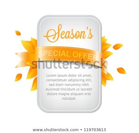 Winkel natuurlijke product garanderen web Stockfoto © robuart