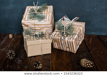 Packed and wrapped giftboxes with conifer on top and several pinecones near by Stock photo © pressmaster