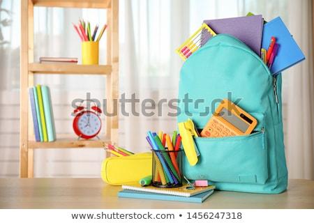Szett mozdulatlan szerszámok iskola illusztráció háttér Stock fotó © bluering