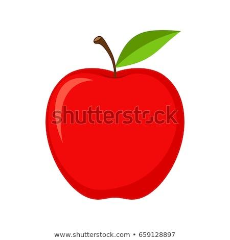 Maçã vermelha apetitoso fruto isolado natureza maçã Foto stock © Imaagio