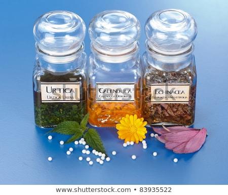 Homeopáticos pílulas folha planta Foto stock © erierika