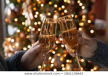 Barátok iszik pezsgő nő munka tájkép Stock fotó © photography33