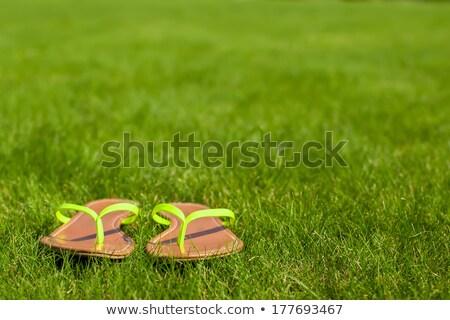Yellow Flip Flops on green grass Stock photo © designsstock