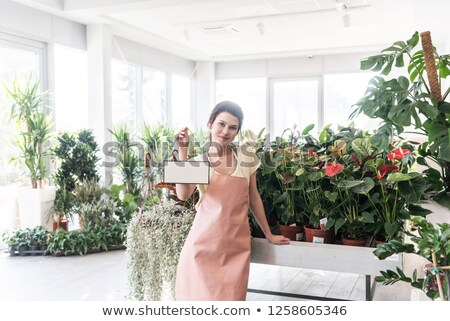 Florist showing business card Stock photo © photography33