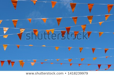 holandés · fútbol · perro · naranja · banderas - foto stock © ivonnewierink