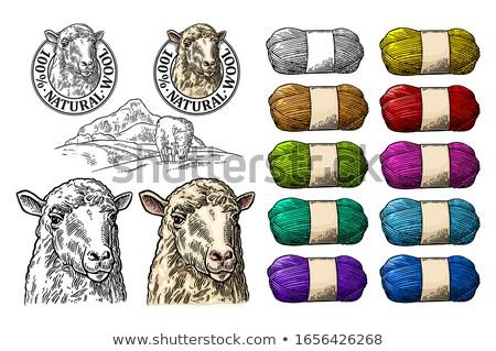 Sheep wool in fence Stock photo © ivonnewierink