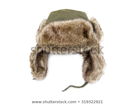 male winter brown hat isolated Stock photo © ozaiachin