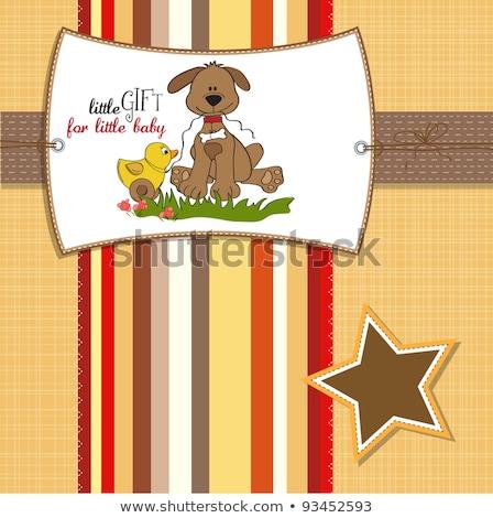 új · baba · fiú · közlemény · kártya · babakocsi - stock fotó © balasoiu