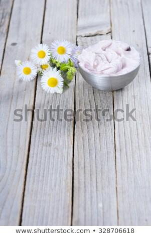 Camomille fleurs rouillée acier domaine Photo stock © franky242