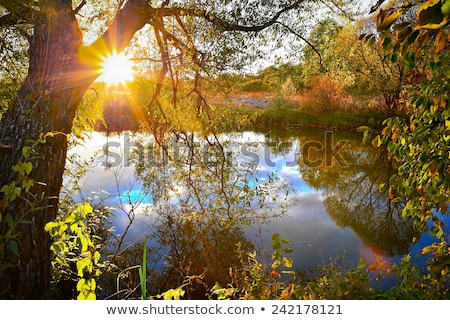 Quiet river at sunset Stock photo © Givaga