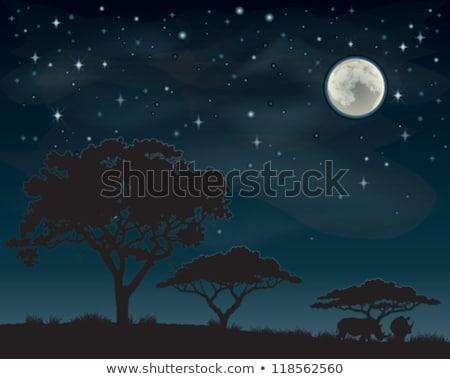 большой Буш силуэта луна глядя подобно Сток-фото © Kuzeytac
