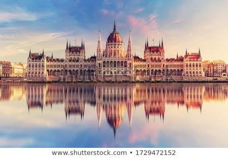 Budapest parlamento costruzione Ungheria crepuscolo urbana Foto d'archivio © Nneirda