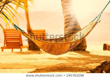 Fantastik Seyşeller ada cennet görmek deniz Stok fotoğraf © bubutu