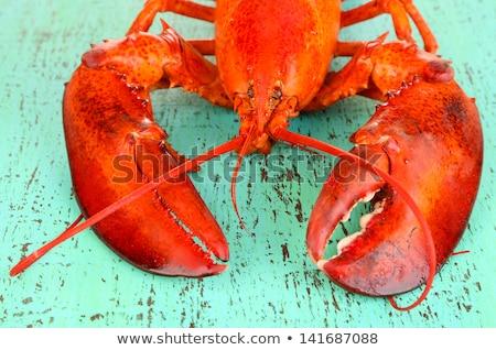 cooked crayfish close-up  Stock photo © OleksandrO