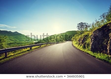 asphalt road in summer day stock photo © ssuaphoto