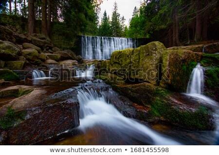 picturesque landscape mountain river stock photo © oleksandro