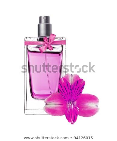 rosa · orquídea · isolado · branco - foto stock © tetkoren