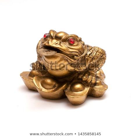 kurbağa · dolar · pençeleri · siyah · su - stok fotoğraf © alina12