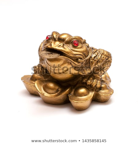 Frog and money Stock photo © Alina12