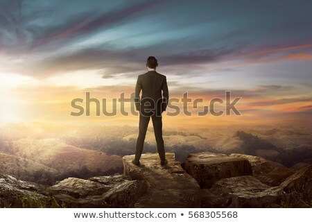 Businessman stand on the meadow stock photo © Paha_L