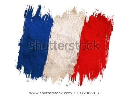 France pavillon sale couleur bleu blanche Photo stock © hlehnerer