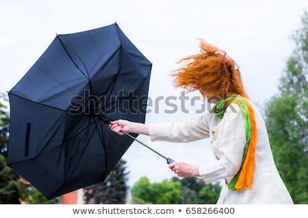 風の強い 肖像 女性 黒 少女 顔 ストックフォト © Novic