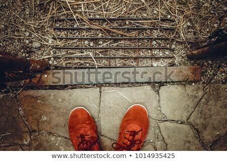 Female legs in pointe shoos Stock photo © deandrobot