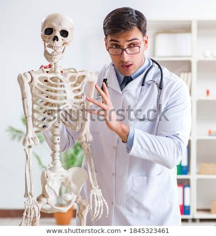 Foto stock: Doctor · de · sexo · masculino · esqueleto · aislado · blanco · jóvenes · hombre