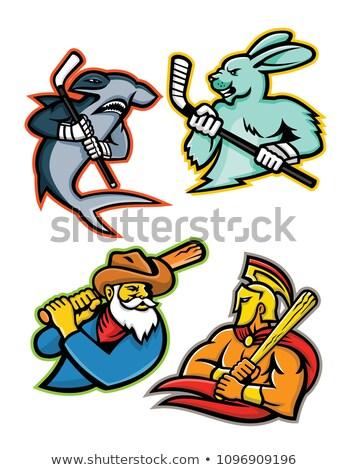 Béisbol hockey sobre hielo equipo mascotas colección mascota Foto stock © patrimonio