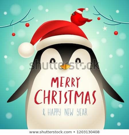 圣诞节 可爱 小 企鹅 帽鸟 商业照片 ori-artiste