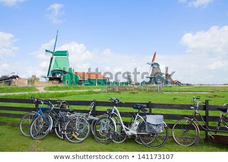 オランダ語 バイク 春 ツリー オランダ 夏 ストックフォト © neirfy